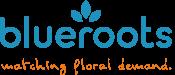 blueroots Logo